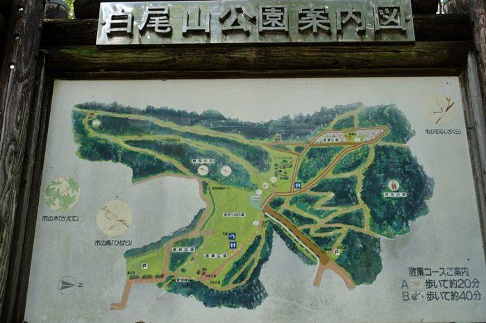 白尾山公園案内図