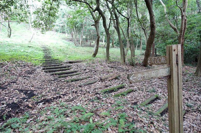 白尾山公園の「昆虫の森」