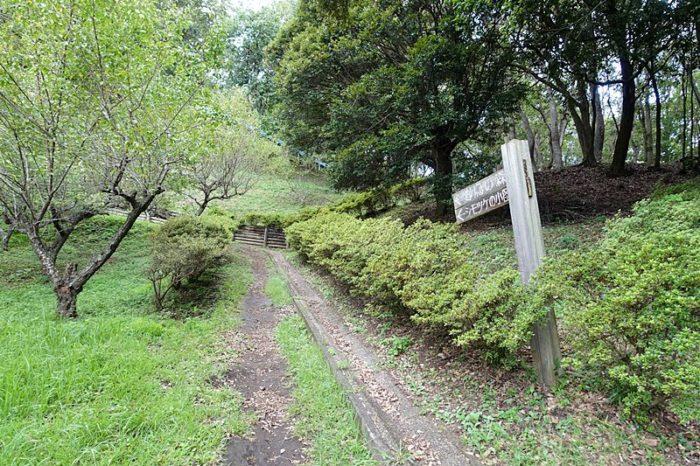 白尾山公園の「野鳥の森」