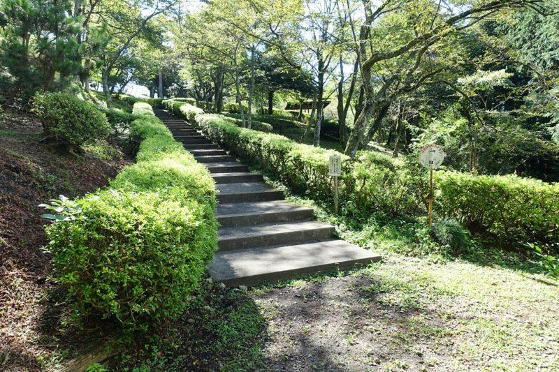 天母山自然公園の階段