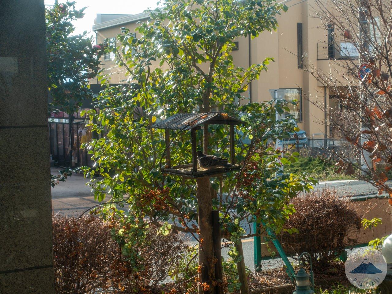 萩の亭の巣箱